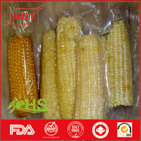 Vacuum packing sweet-waxy corn for wholesale