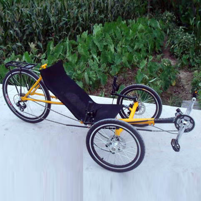 Agree, the 3 wheel recumbent style adult bike can you