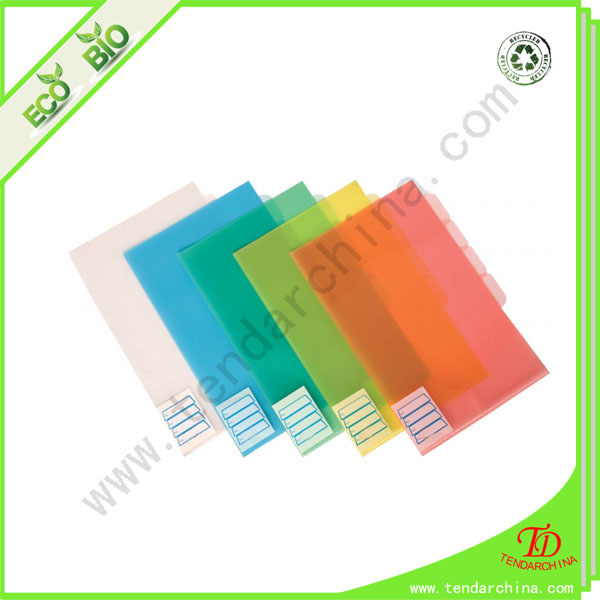 File Folder With 5 Dividers Made By 100% Recycled PP No Ring Binder