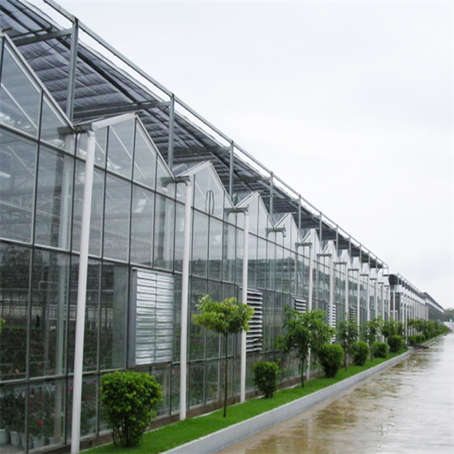 Venlo type flower multi span commercial glass greenhouses used