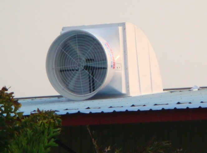 Industrial Roof Fan Industrial Roof Mounted Exhaust Fan