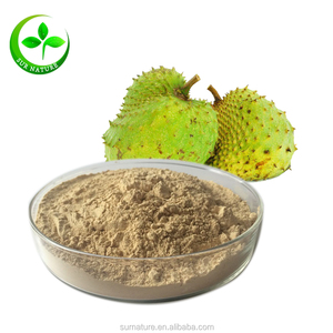 High quality soursop juice powder, graviola soursop p.e. for children and old-aged adults
