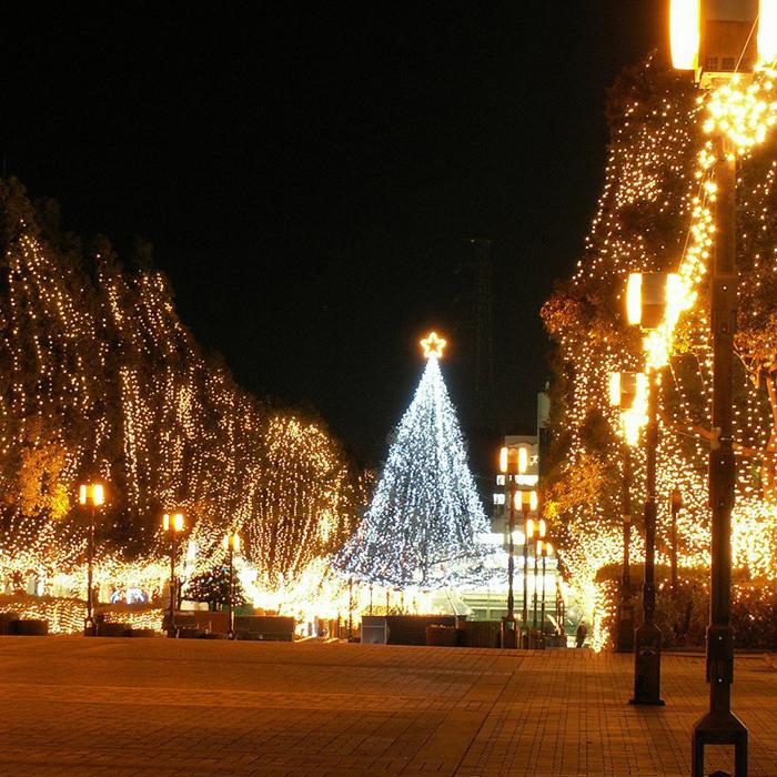 Led Christmas Lights Warm White.Wholesale Kmashi 220v Eu 100m 600 Led Garland Led Christmas Lights Decoration Wedding Lamp Party Twinkle String Lights Fairy Warm White Christmas