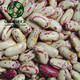 New Crop Pinto Beans/ Light Speckled Kidney Bean/ American Round LSKB