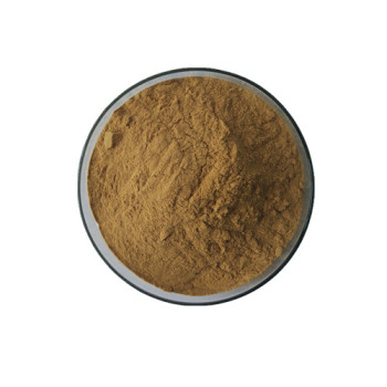 ISO9001 Factory supply Natural Kava, Kava Kava Extract Kavalactones 30% HPLC certificated by Halal &kosher