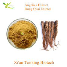 Angelica extract (Dong Quai) Extract 1% Ligustilide Angelica Root