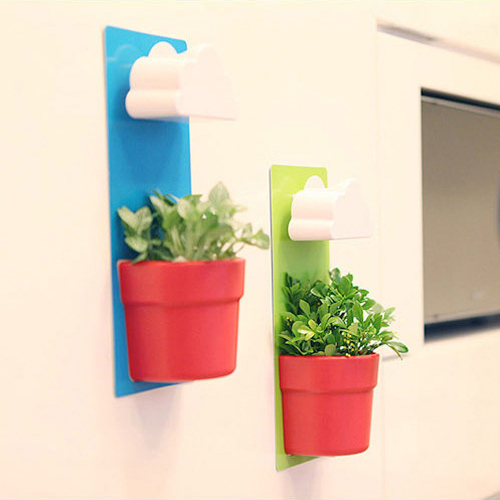 get quotations garden decoration rainy pot novelty wall mounted flower pots planters with seed indoor office plants cheap office plants