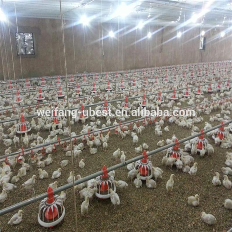 Iyi fiyat etiyopya kümes hayvanları tavuk çiftlik ekipmanları satılık