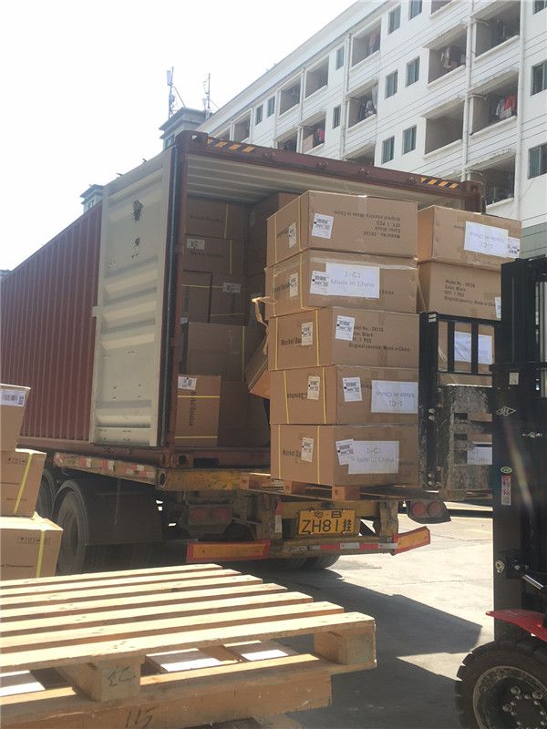 Ocean Sea Waterway Shipping Logistics freight forwarding from China to Thailand,Malaysia,India,Pakistan, Philippines