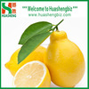 Premium Quality Chinese Fresh Lemon For Global Market