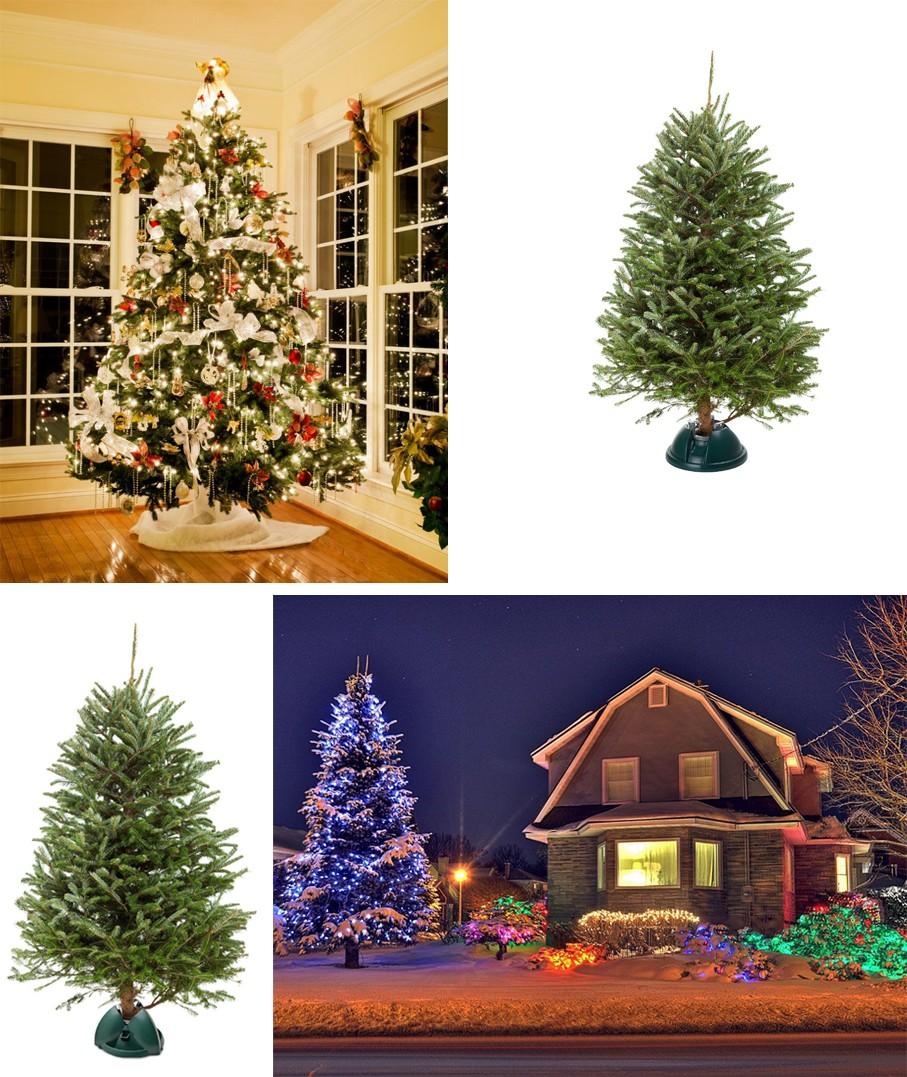100 christmas tree stand swivel swivel straight tree stand