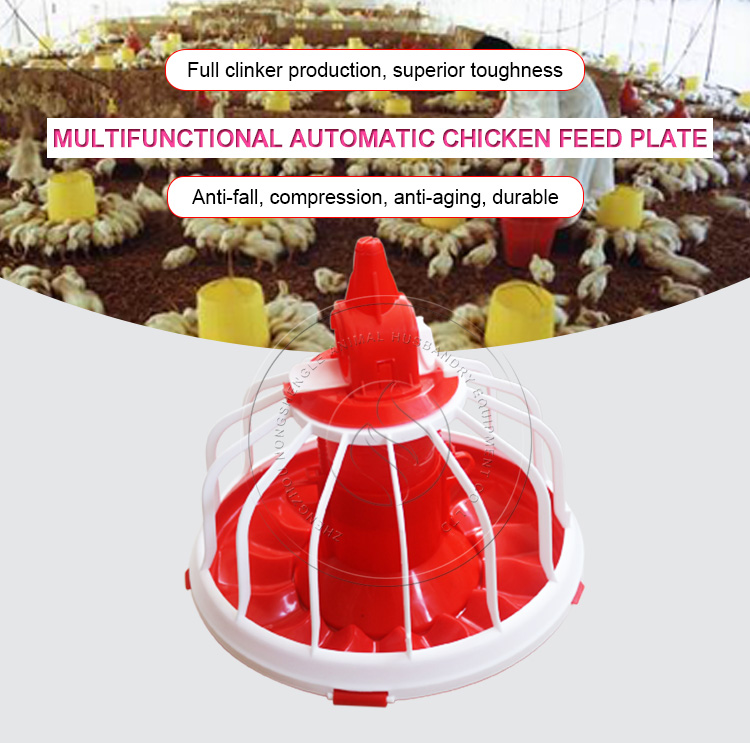 Poultry farming raising poultry auto chicken trough pan
