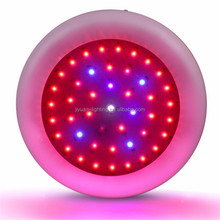China Low Voltage Grow Lights China Low Voltage Grow Lights Manufacturers and Suppliers on Alibaba.com  sc 1 st  Alibaba & China Low Voltage Grow Lights China Low Voltage Grow Lights ... azcodes.com