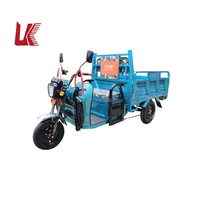 Best Price Multipurpose Adult Cheap Electric Tricycle for Passenger and Cargo/electric tricycle for adults used