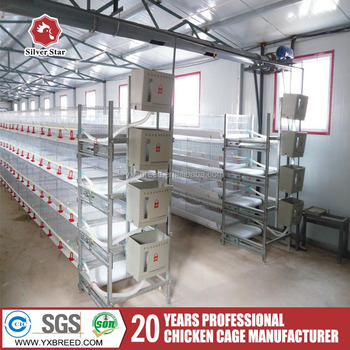 20 Farm Tools And Their Uses In Broiler Poultry Farms Buy 20 Farm Tools And Their Uses Farm Tools And Equipment And Their Uses Poultry Farms Tools