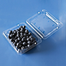 plastic disposable frozen food tray