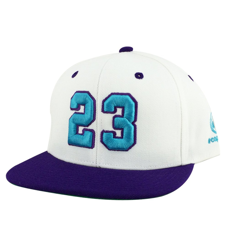 b476bf4b89ddaa Number  23 White Purple Aqua Visor Snapback Hat Cap X Air Jordan Grape  Hornets Color