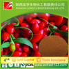 Manufacturer sales goji berry importers