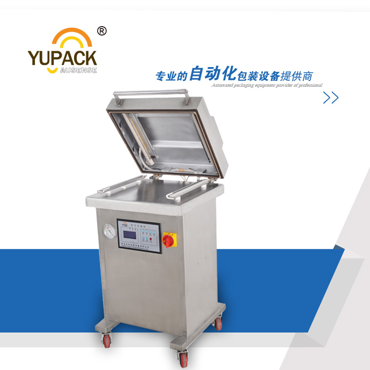 DZ400/2L single chamber vacuum packing machine for food