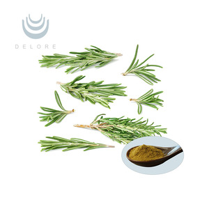 Perilla/Rosemary Leaf Extract Rosmarinic ursolic Acid 2.5%~98%