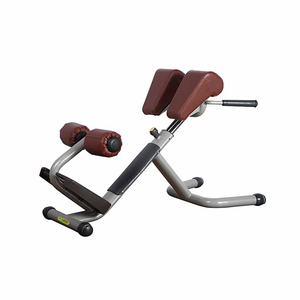 Fitness EquipmentAN31 Roman Chair/ Commercial Gym Equipment
