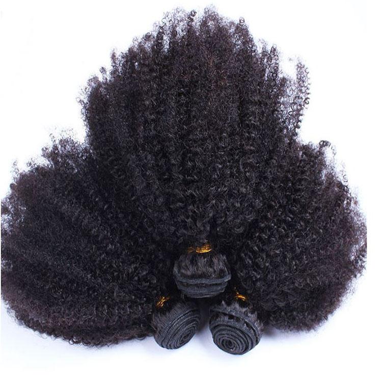 Afro Kinky Curly Hair Machine Double Drawn Shedding Free Virgin Malaysian Human Hair Bundles, Natural color 1b