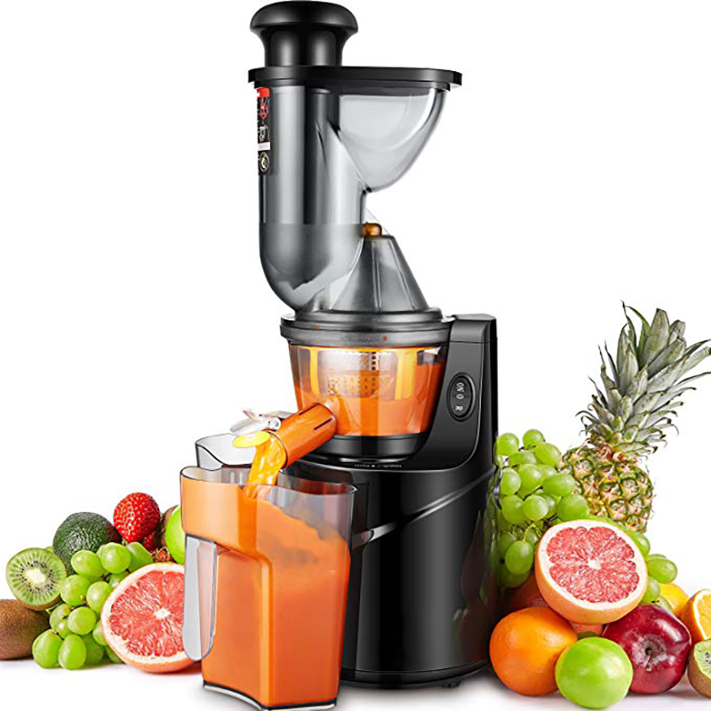 Elektrische Trage Snelheid Fruit Juicer