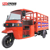 250cc Cargo Tricycle 3 Wheel Motorcycle with Water cooled Engine For Sale Topway 250