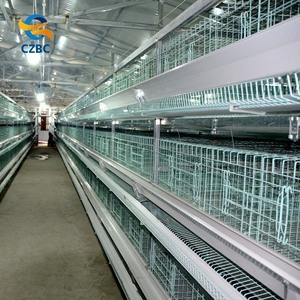 hot sale uganda chicken farm battery cages for layers