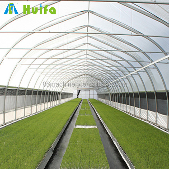Large Size Single Layer Plastic cucumber greenhouse for sale