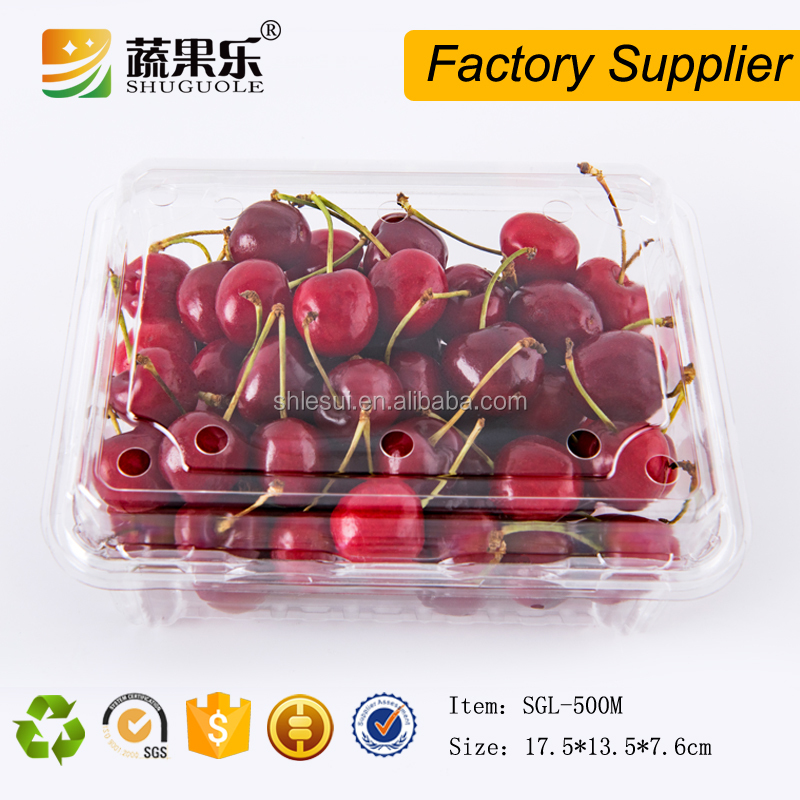 Food Grade Custom 500g Fruit cherry tomato Packing PET Punnet