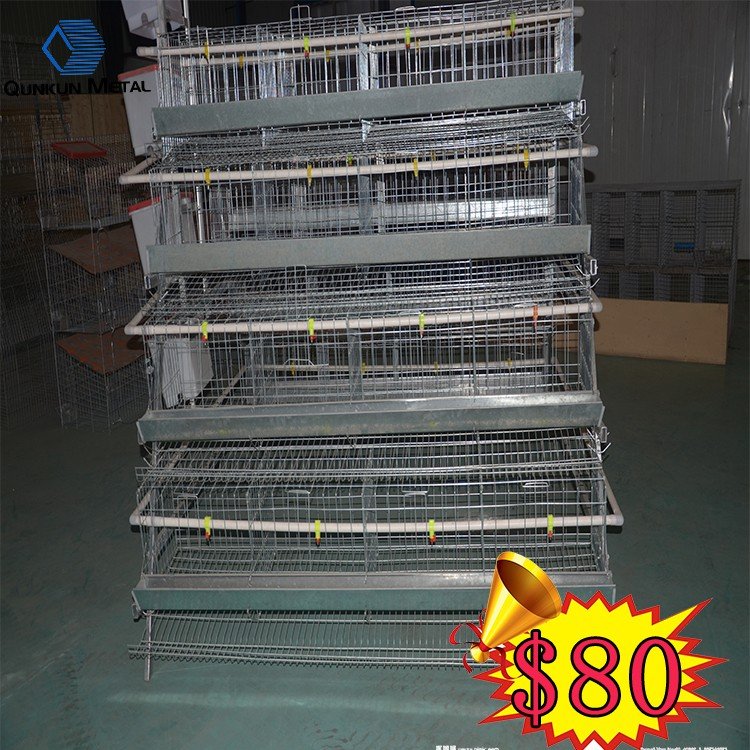 ruite manufactured automatic chicken cages for laying hens used