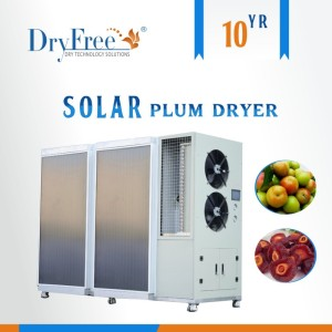 OEM Accept New Energy Solar 3HP Domestic Heat Pump Fruit Dryer Machine