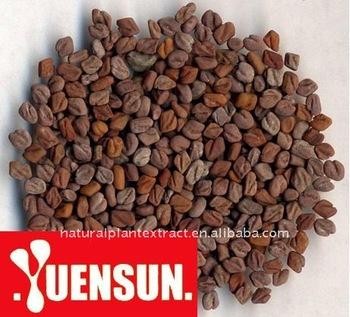 Fenugreek Seed Extract/fenugreek Seed P.e/fenugreek Seed Powder ...