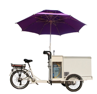 New electric stainless steel ice cream bike food cart cargo bicycle customizable for sale