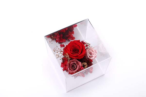 Acrylic box preserved flowers gifts enchanted rose for girls
