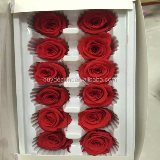 Wedding Decorative Real Touch Eternal Preserved Fresh Roses From Yunnan Of China