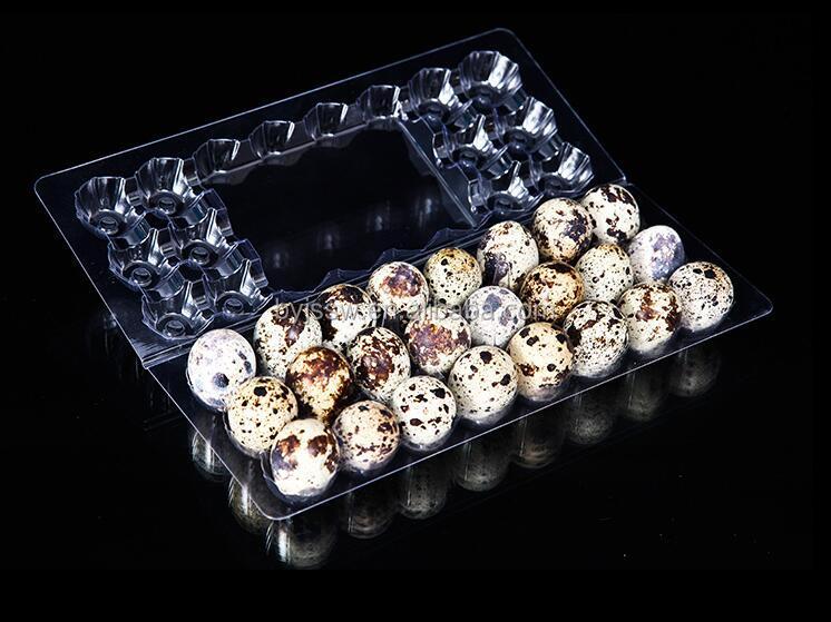 Good Quality 6, 12, 18, 20, 24, 30 Quail Egg Cartons for Sale