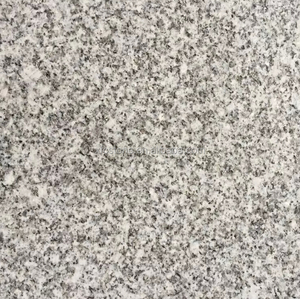 Free Chinese Cheap natural stone white light grey granite G603 tiles 12x12