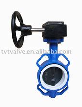 Wafer Type Butterfly Valve with 2 stems