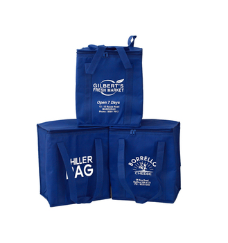 Customized Recycled Promotional PP Non Woven Lunch Bag