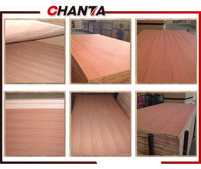 Chanta brand for home fancy embossed sapele plywood