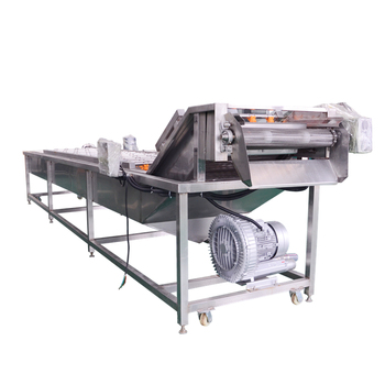 Professional manufacturer vegetable washing machine price