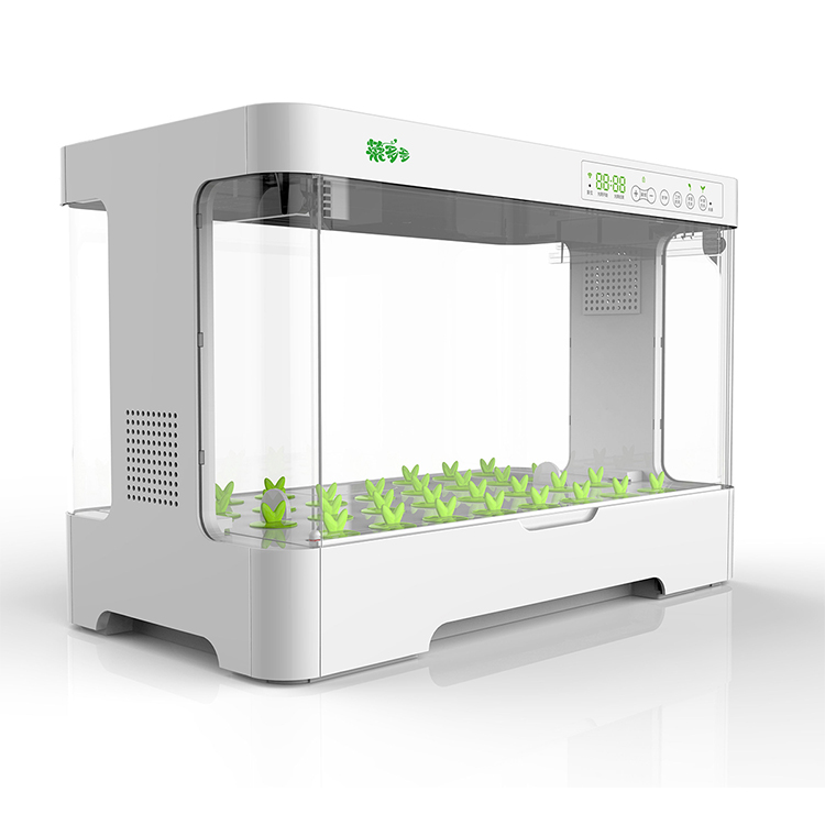 wholesale Indoor Hydroponic Grow Systems For Plant