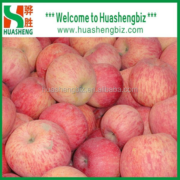 Best quality fresh delicious fuji apples