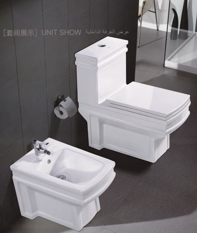 ceramic washdown one piece sanitary toilet
