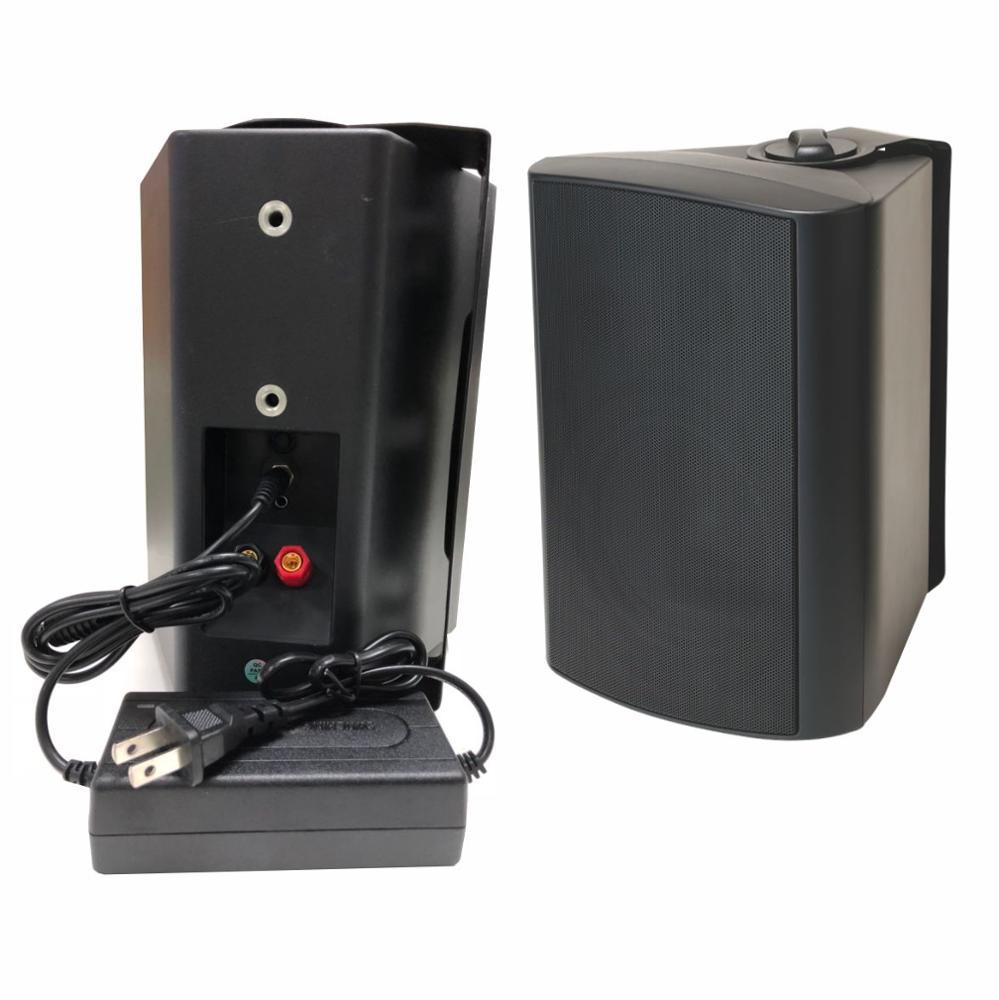 Настенная акустическая система настенная активная Колонка 10 Вт 20 Вт 30 Вт 40 Вт 60 Вт 80 Вт 100 Вт Мощность и цена отличаются