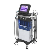 10 in 1 hydrodermabrasion facial ultrasound skin machine for beauty salon spa