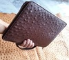 Ostrich Leather iPad Case