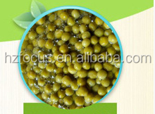canned broad green peas best price from china